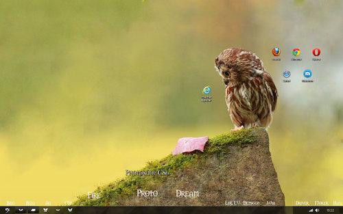 back-ground-owl