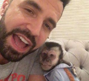 Vídeo de macaco do Latino sendo cremado divide opiniões