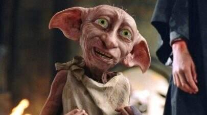 Personagem de Harry Potter aparece no jogo de Egito x Uruguai; Ele torce para a celeste