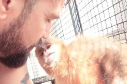 Cheio de intimidade, Latino beija nova macaquinha de estimação