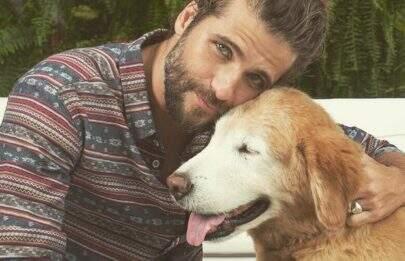 Bruno Gagliasso faz texto emocionante ao anunciar morte de seu cachorro