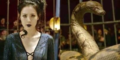 Entenda melhor quem é Nagini, antes conhecida apenas como a cobra do Voldemort
