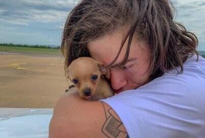 """Whindersson Nunes homenageia Gisele em nome de nova cachorrinha: """"Gisele Pinscher"""""""