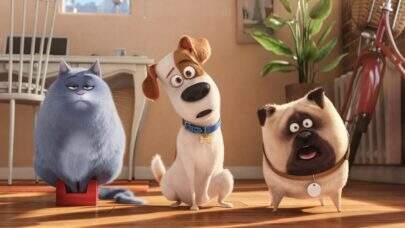 """Primeiro trailer de """"Pets 2"""" mostra Max sofrendo no veterinário"""