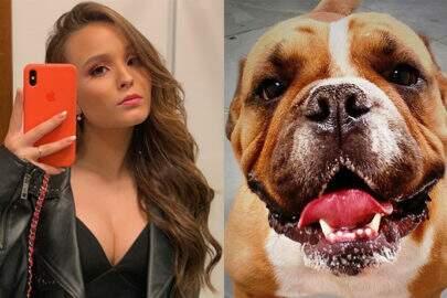 """Larissa Manoela anuncia morte de seu cachorro: """"Um pedacinho meu foi embora"""""""