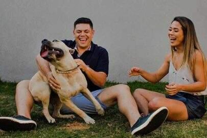 Casal tenta tirar fotos com cachorro e resultado é hilário