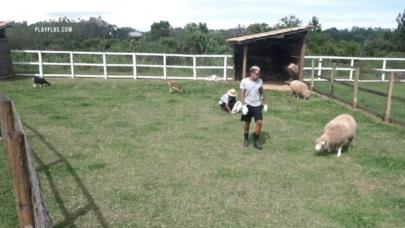 """'A Fazenda': Sobrecarregado com tarefas, Lipe Ribeiro se irrita por Jojo Todynho ter ido dormir: """"Não é possível"""""""