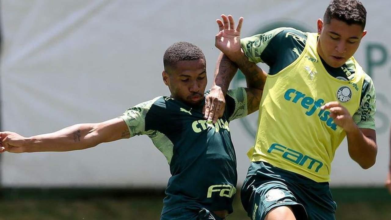 Palmeiras completa lista do Campeonato Paulista e inscreve o meio-campista Pedro Bicalho