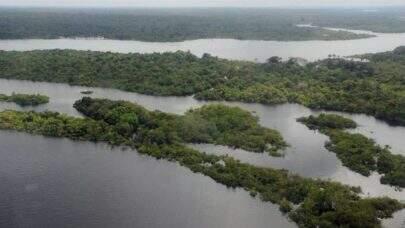 Desmatamento da Amazônia bate recorde em março; número é o maior dos últimos seis anos