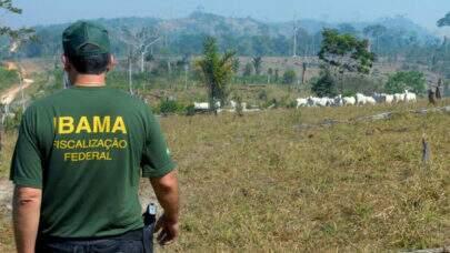 Mais de 400 servidores do Ibama denunciam que as atividades de fiscalização ambientais do órgão estão paralisadas