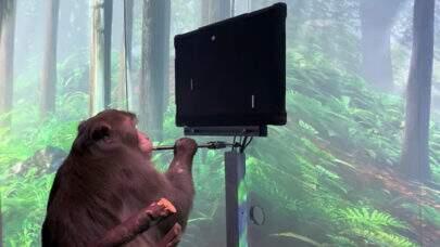 Neuralink, de Elon Musk, divulga vídeo de macaco jogando videogame com a mente